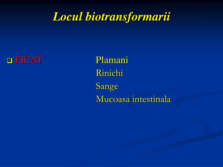 Locul biotransformarii