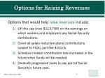 options for raising revenues
