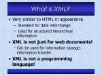 what is xml1