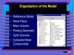 organization of the model