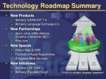technology roadmap summary