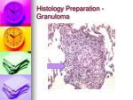 histology preparation granuloma