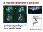 is magnetic buoyancy a problem