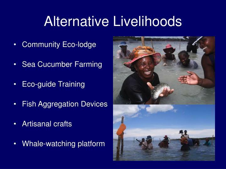 Community Eco-lodge