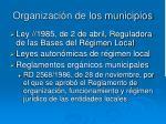 organizaci n de los municipios