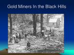 gold miners in the black hills