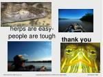 herps are easy people are tough