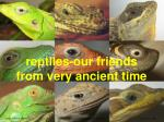 reptiles our friends from very ancient time