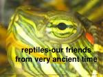 reptiles our friends from very ancient time1