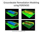 groundwater remediation modeling using pgrem3d