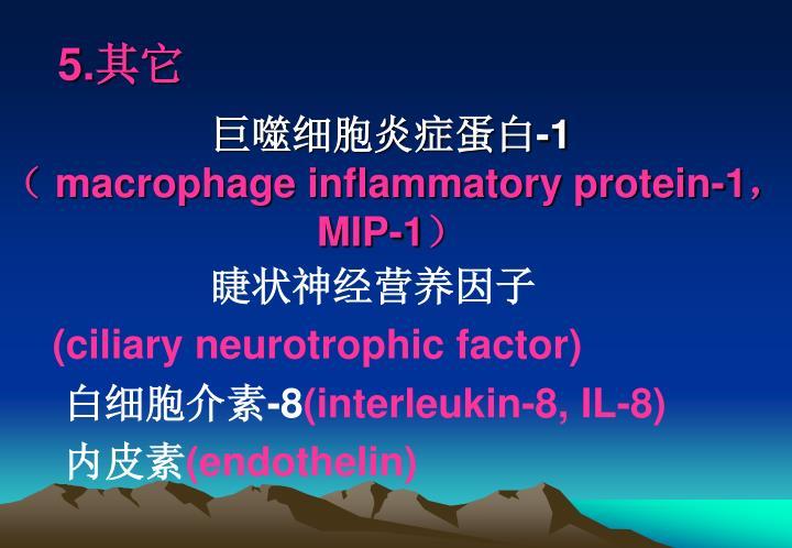 巨噬细胞炎症蛋白