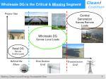 wholesale dg is the critical missing segment