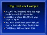 hog producer example