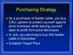 purchasing strategy