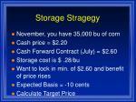 storage stragegy