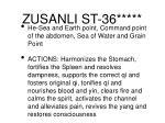 zusanli st 36