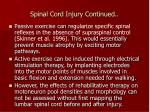 spinal cord injury continued