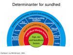 determinanter for sundhed