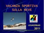 vacanza sportiva sulla neve
