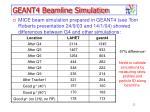 geant4 beamline simulation