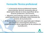 formaci n t cnica profesional