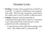 granular locks1