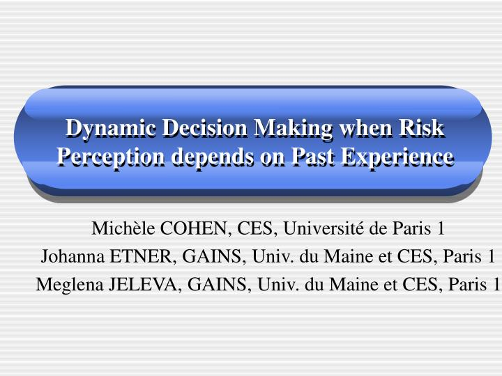dynamic decision making when risk perception depends on past experience n.