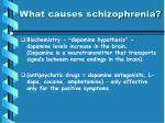 what causes schizophrenia2