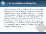perfil das empresas brasileiras1