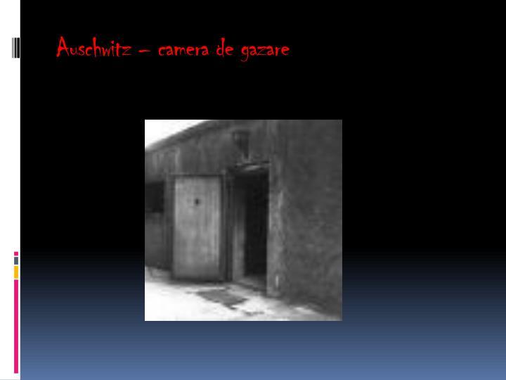 Auschwitz – camera de gazare