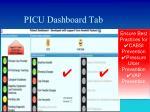 picu dashboard tab