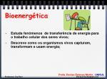 bioenerg tica1