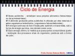 ciclo de energia