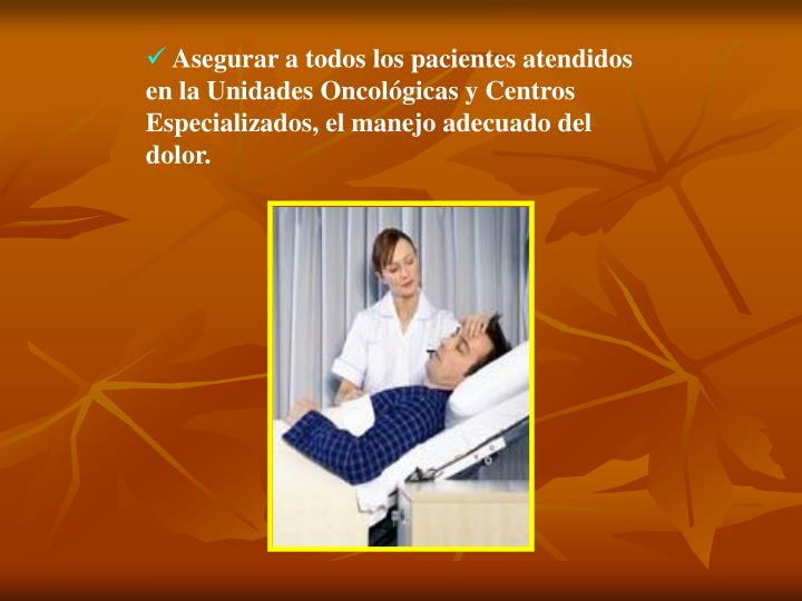 Asegurar a todos los pacientes atendidos en la Unidades Oncológicas y Centros Especializados, el manejo adecuado del dolor.