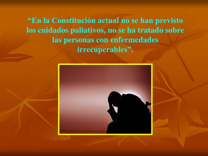 """""""En la Constitución actual no se han previsto los cuidados paliativos, no se ha tratado sobre las personas con enfermedades irrecuperables""""."""