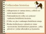 collierodun historiaa