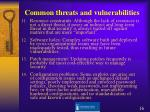 common threats and vulnerabilities2