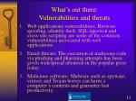what s out there vulnerabilities and threats1