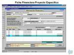 ficha financiera proyecto espec fico