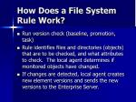 how does a file system rule work
