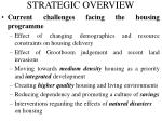 strategic overview1