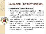 hayrabolu t caret borsasi5