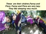 these are their chidren fanny and flora fanny and flora are very lazy they like sleeping very much