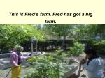 this is fred s farm fred has got a big farm