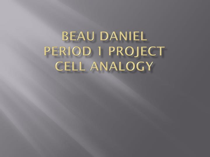 beau daniel period 1 project cell analogy n.