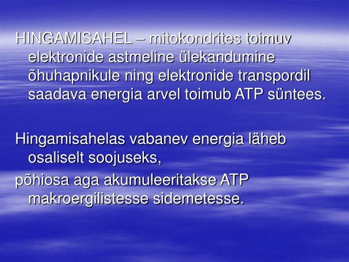 HINGAMISAHEL – mitokondrites toimuv elektronide astmeline ülekandumine õhuhapnikule ning elektronide transpordil saadava energia arvel toimub ATP süntees.