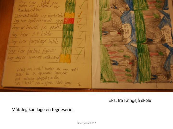 Eks. fra Kringsjå skole