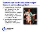 wof r kann das pers nliche budget konkret verwendet werden