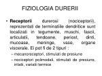 fiziologia durerii