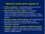 beneficiile inotului pentru organism 1